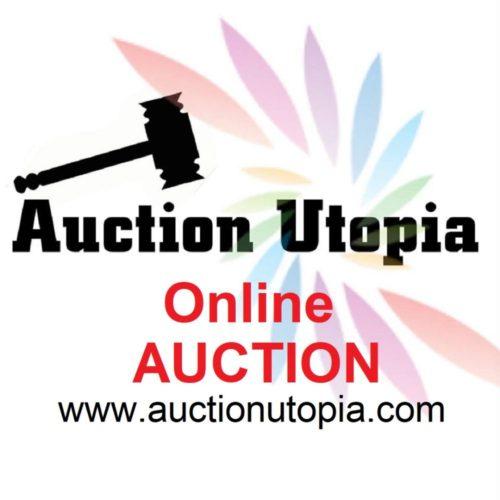 AUCTION ad3